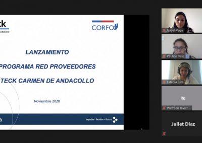 Taller Online para el Programa de Red de Proveedores Minería Teck Andacollo.